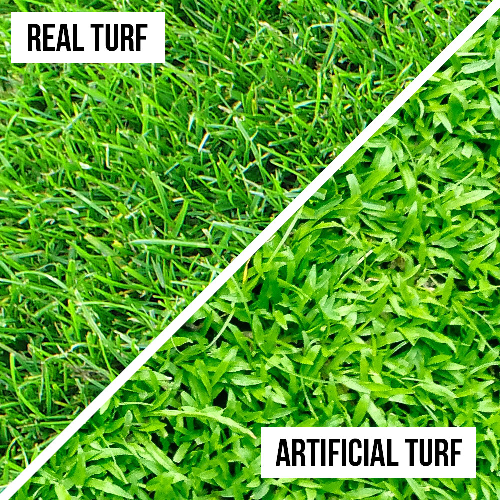 Real turf compared to artificial turf