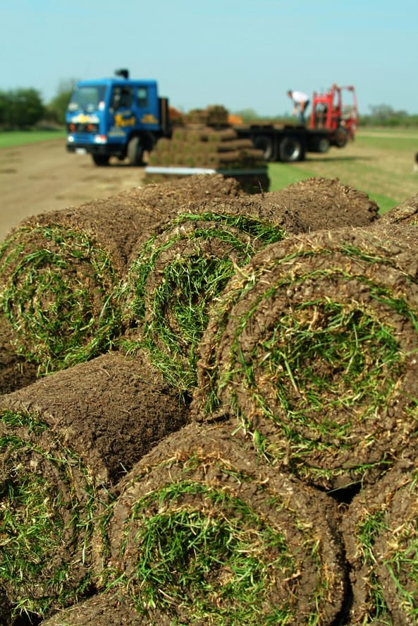 Online Turf Rolls in Gerrards Cross