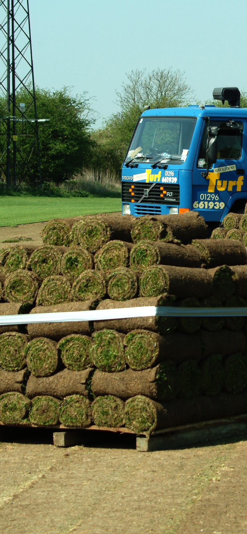 Lawn Turf in High Wycombe